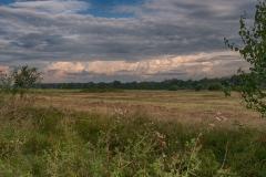 landschaphth3